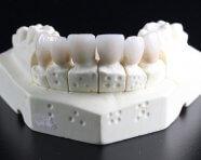 התחומים המרכזיים ברפואת שיניים [ולמה לבחור אותם במקום אחד]